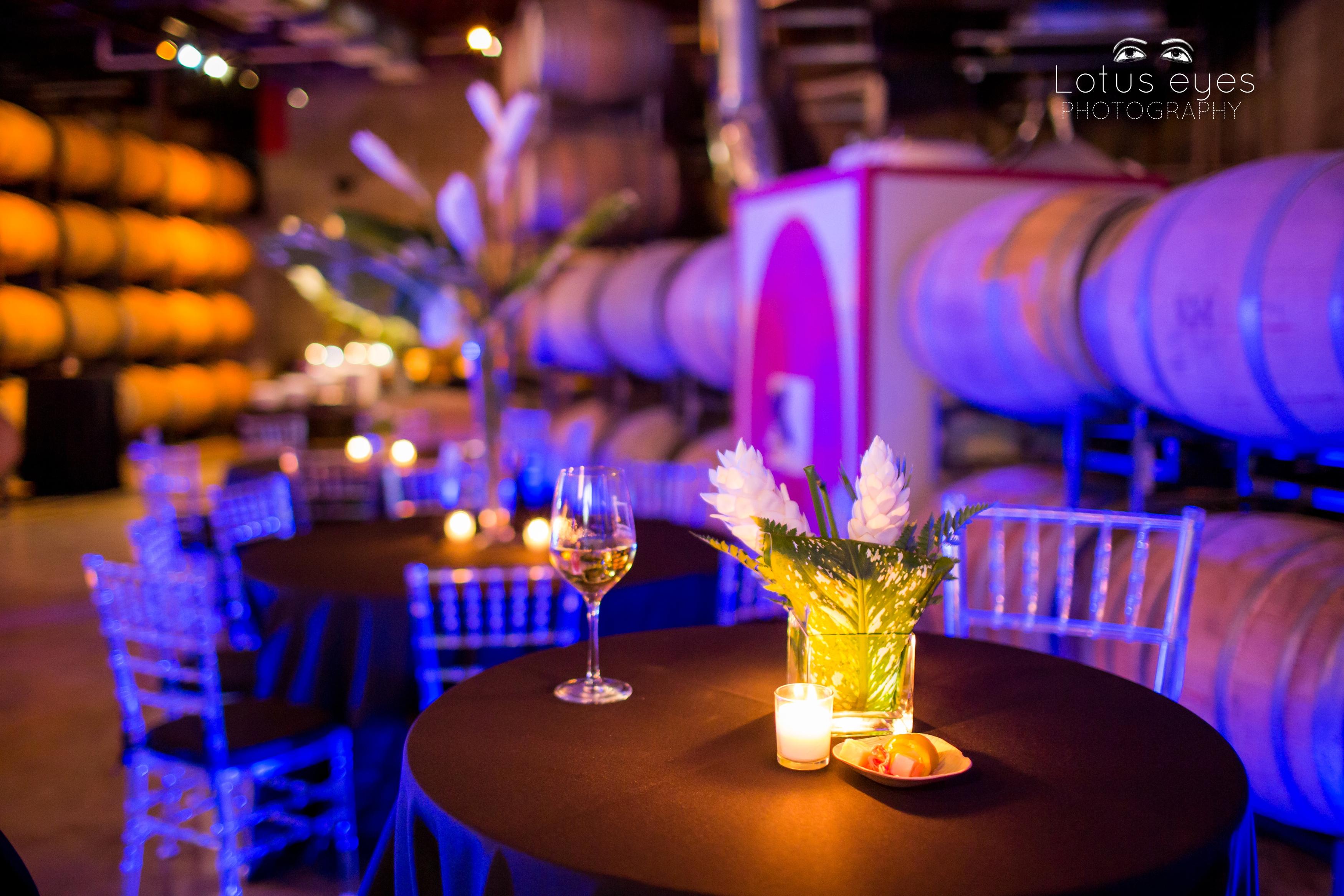 quantum lighting photography. quantum leap winery wedding photographs best orlando photographer lighting photography a